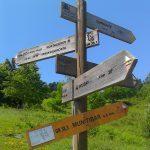 SENDERISMO y Marcha Nórdica: Markina, desandando el camino de santiago