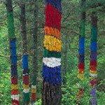 bosque oma